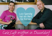 Photo of Neues Katzencafe in Düsseldorf ♥ Lutz Spendig eröffnet Catz Cafe am 20.04.18