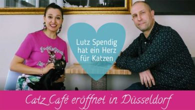 Lutz Spendig, Catz Cafe, Katzencafe Düsseldorf, Katzenkaffee Düsseldorf