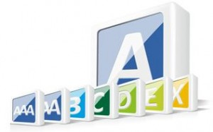 auxmoney Score