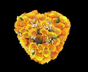 Sprache der Blumen, gelbe Rosen