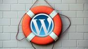 Wordpress seite gehackt was tun
