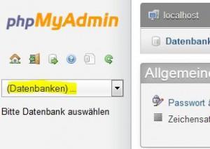 phpmyadmin import