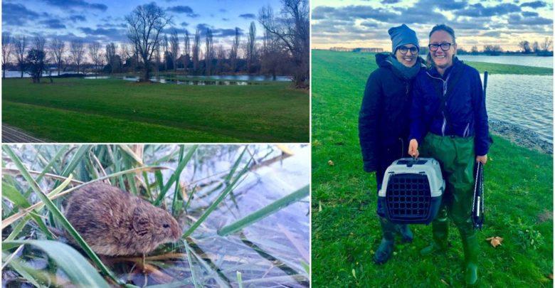 Wildtiere retten am Rhein vor Hochwasser mit Marion Baers und Julia Dieckmann