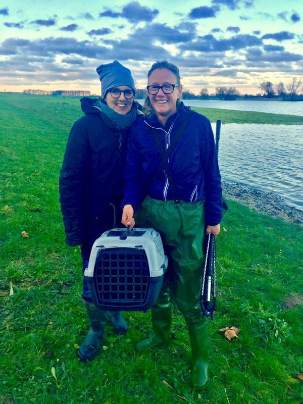 Wildtiere retten am Rhein bei Hochwasser, Marion Baers und Julia Dieckmann