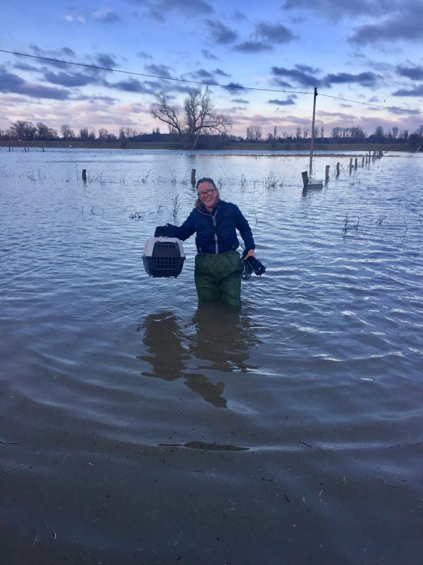 Wildtiere retten am Rhein vor Hochwasser mit Marion Baers
